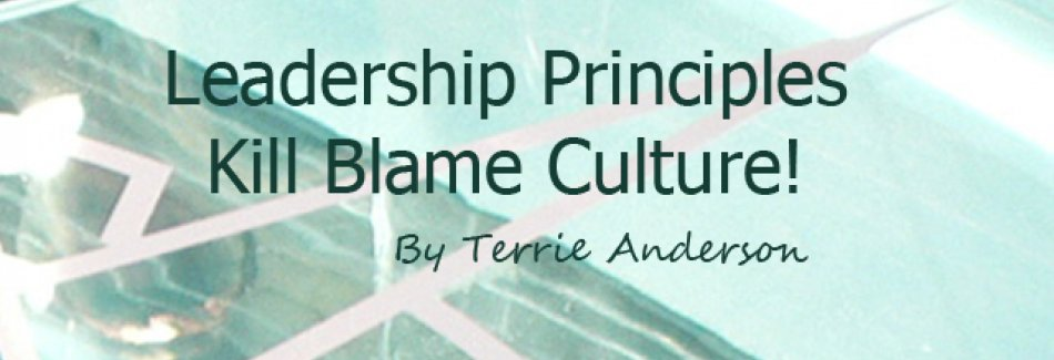 Team Terrie - Leadership principles - Kill blame Culture